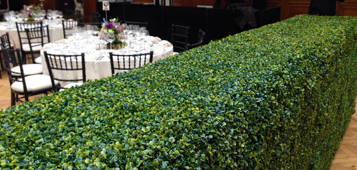 Hedges for indoor use