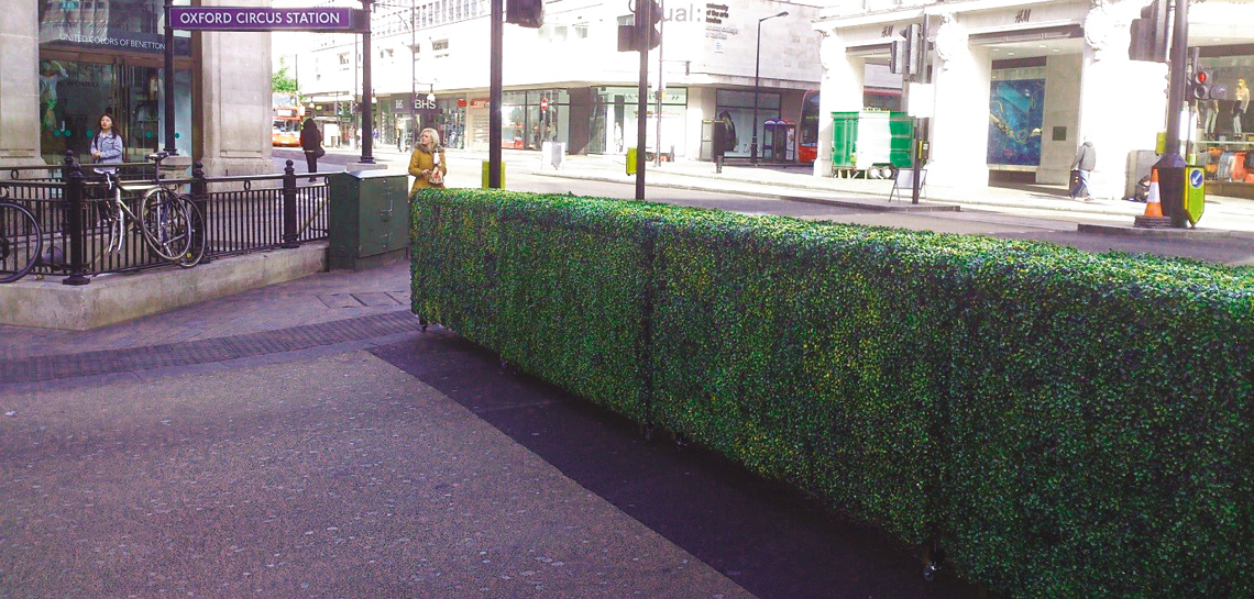 Street barrier from hedges